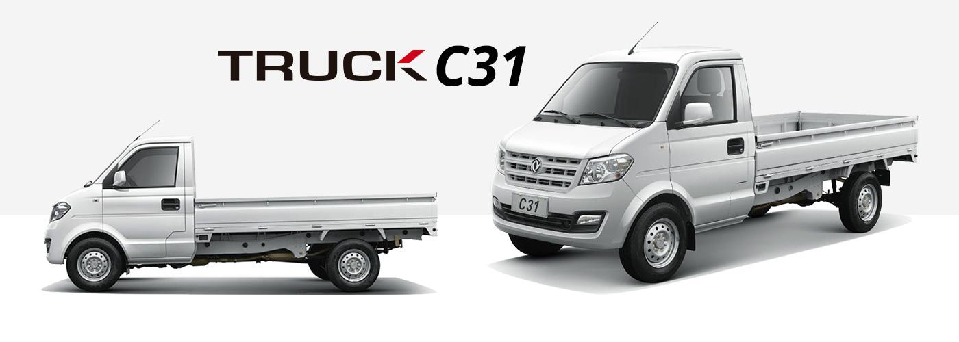 Truck Cabina Simple C31